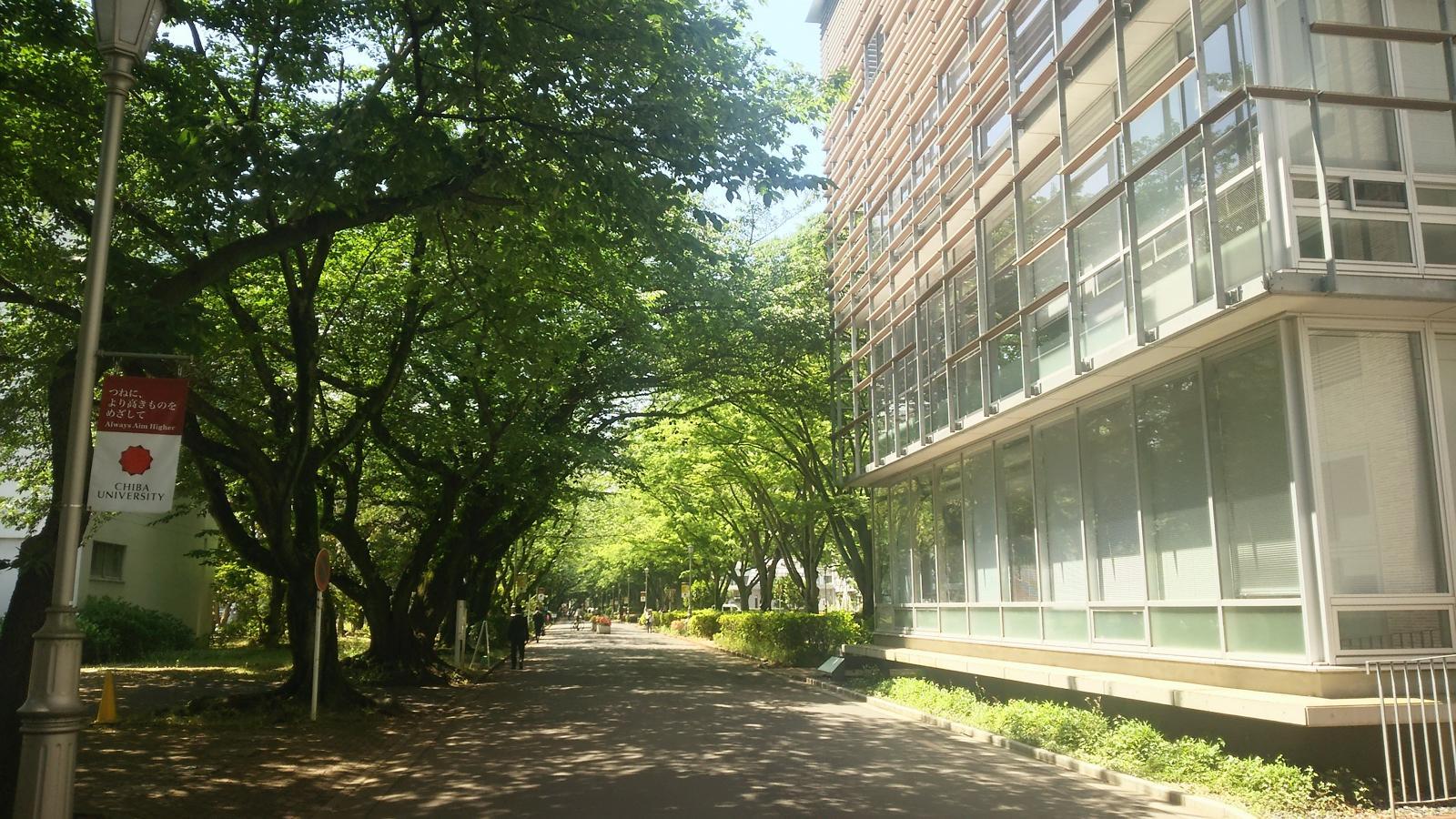 国立千葉大学西千葉キャンパス内の施設外観全景写真です。