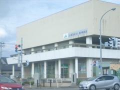 JA新潟みらい坂井輪支店