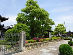 今井第2都市緑地