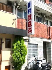 川村獣医科