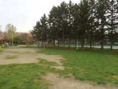 新琴似グリーン公園