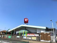 コメリハード&グリーン川島店