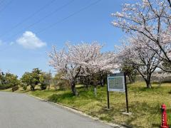姫御前公園
