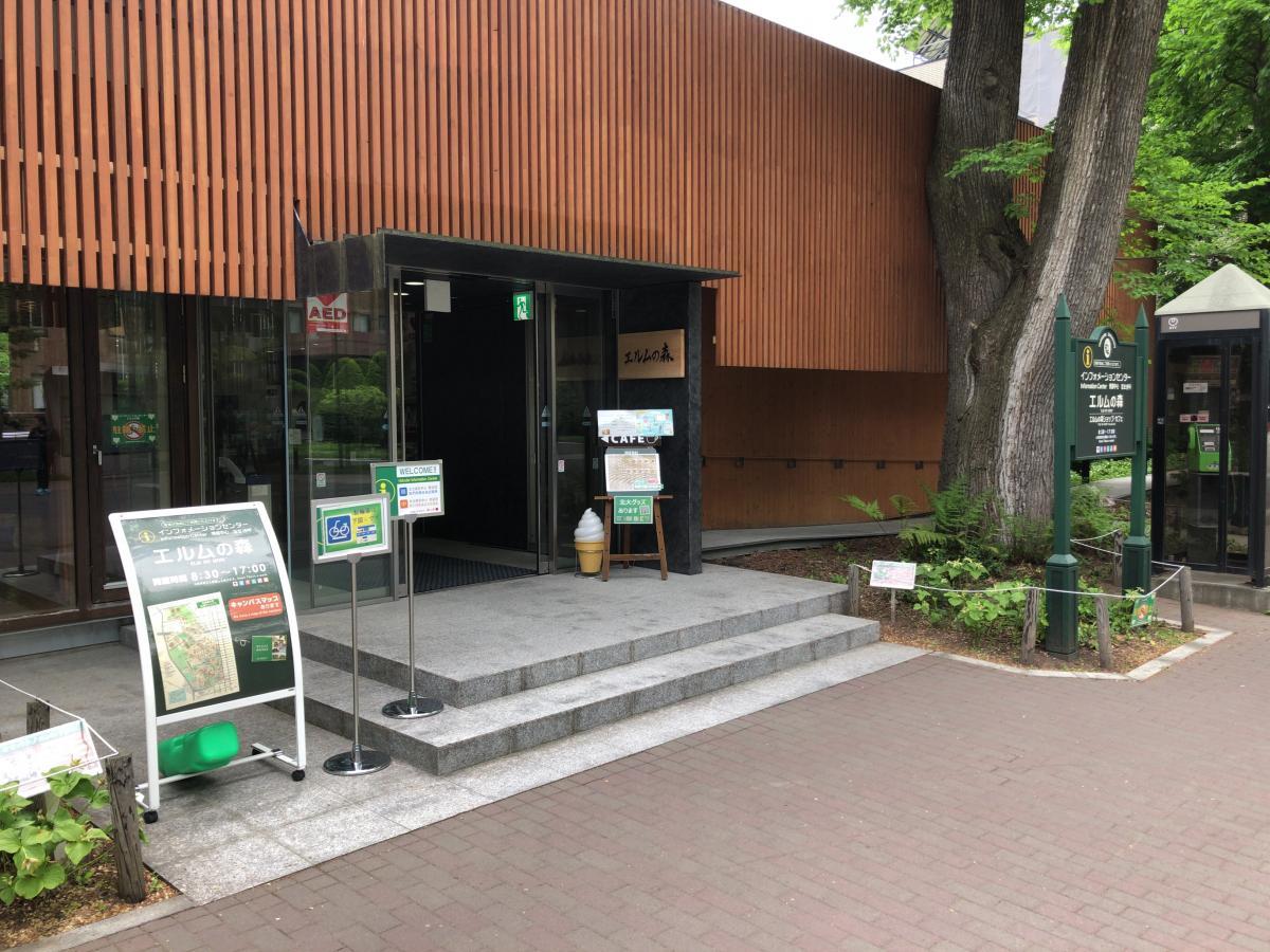 北海道大学札幌キャンパス エルムの森外観