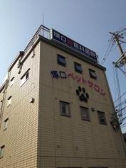 塚口獣医科医院