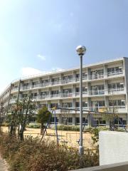 出川小学校
