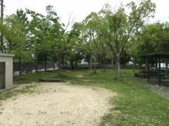 第7号広表緑地