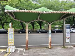 「名古屋城正門前」バス停留所
