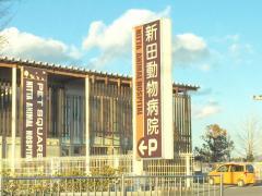 新田動物病院