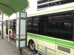 「フェリーターミナル駅前」バス停留所