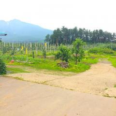 岩木山観光りんご園