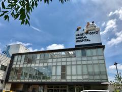 平成八事動物病院
