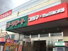 コジマ×ビックカメラ東村山店