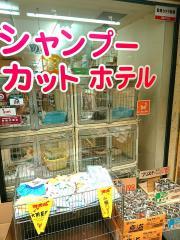 ペットスタイル阪神尼崎店
