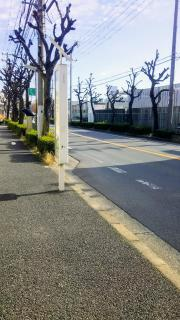 「波洲橋」バス停留所