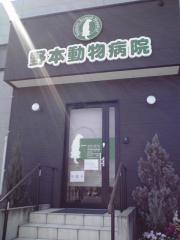 野本動物病院