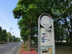 「富士見中央公園前」バス停留所