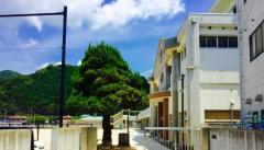 東長崎中学校