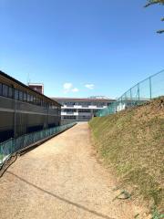 鵜飼小学校