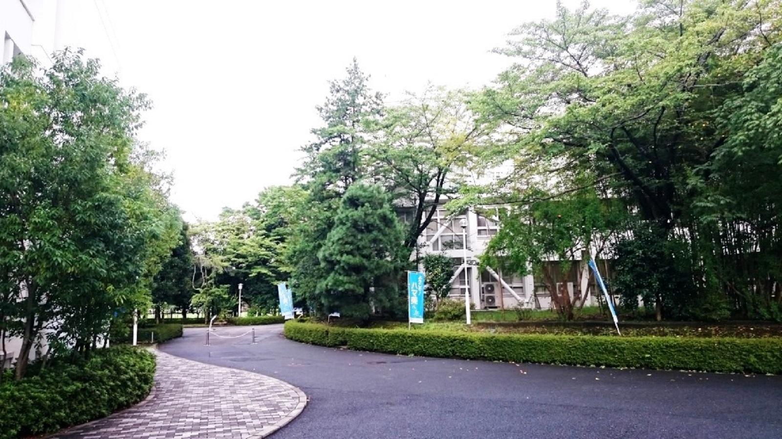 美術 大学 横浜