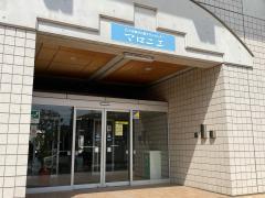 小田原市川東タウンセンターマロニエ