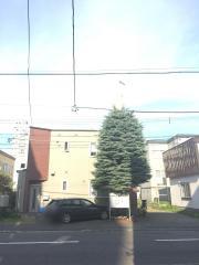 札幌元町教会