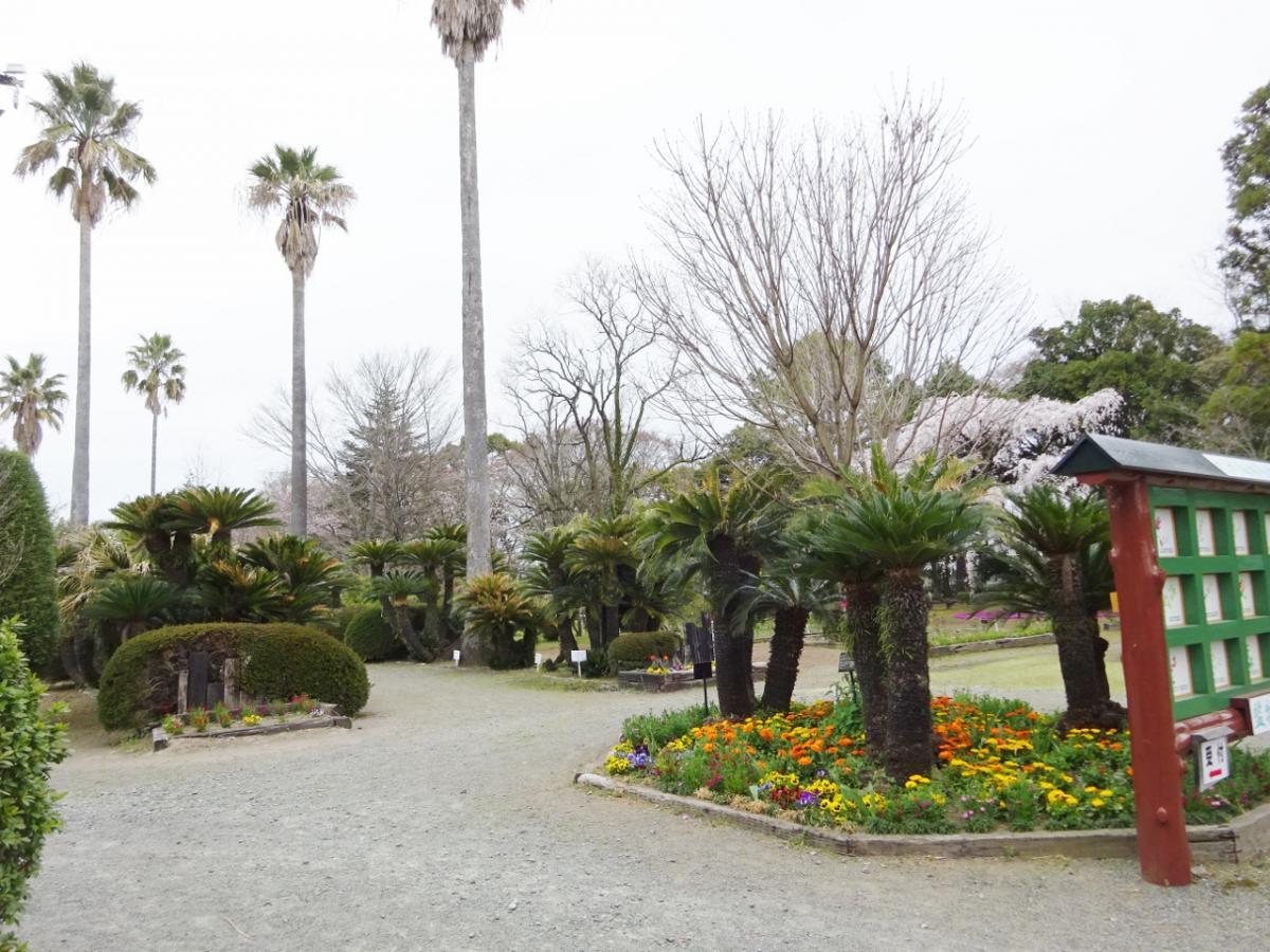 監物台樹木園森林博物館