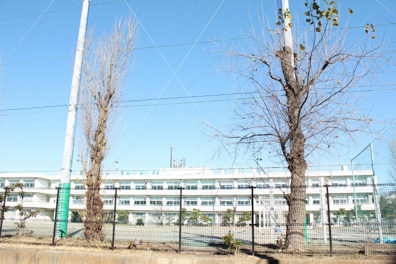 堀江 中学校 ホームページ