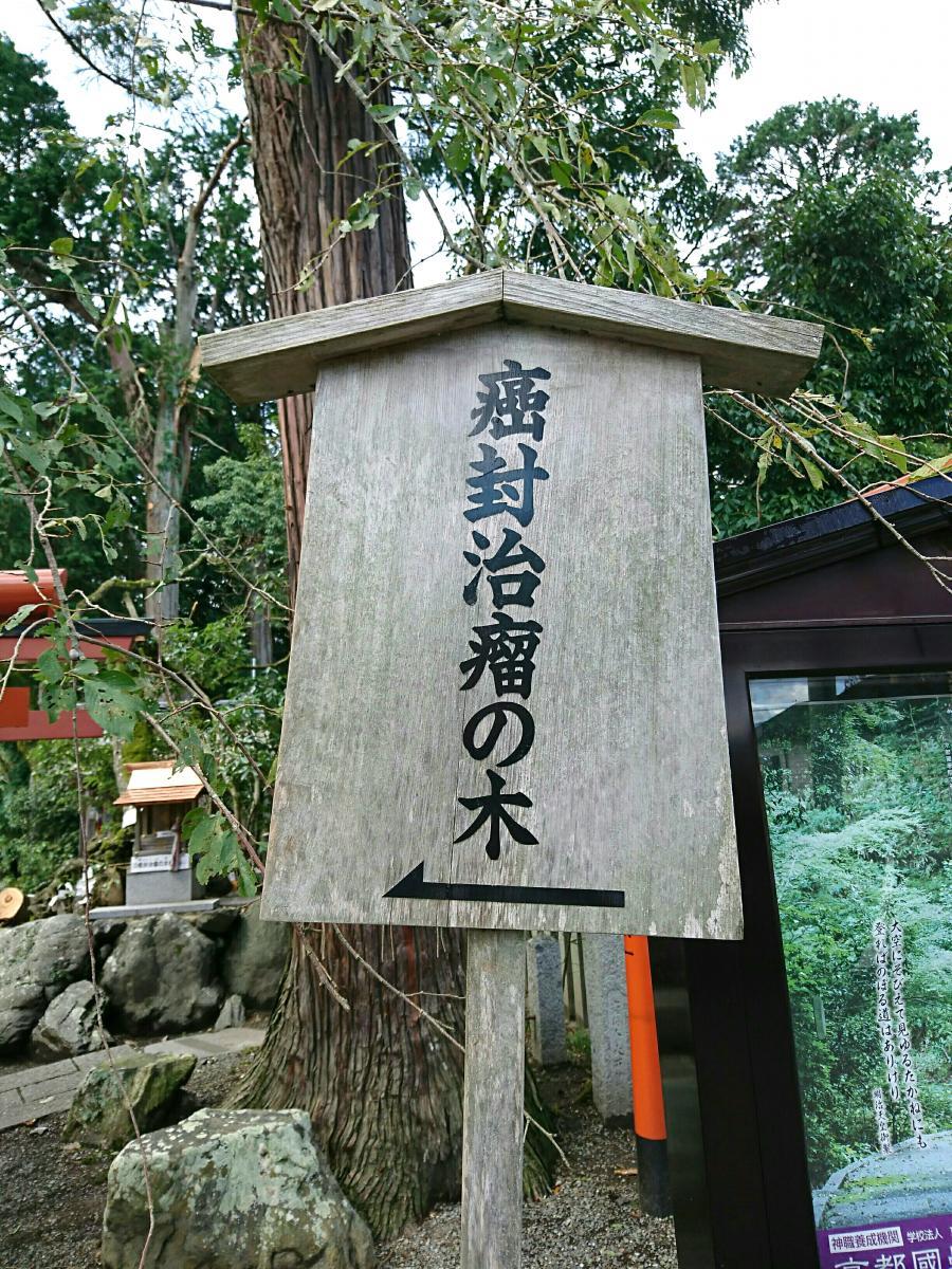 田野 神社 ひえ