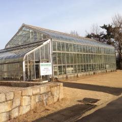 内藤記念くすり博物館附属薬用植物園