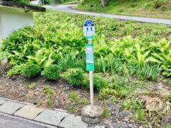 「岩室」バス停留所
