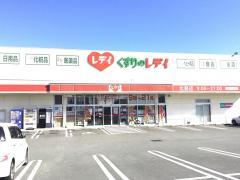 レデイ薬局北島店