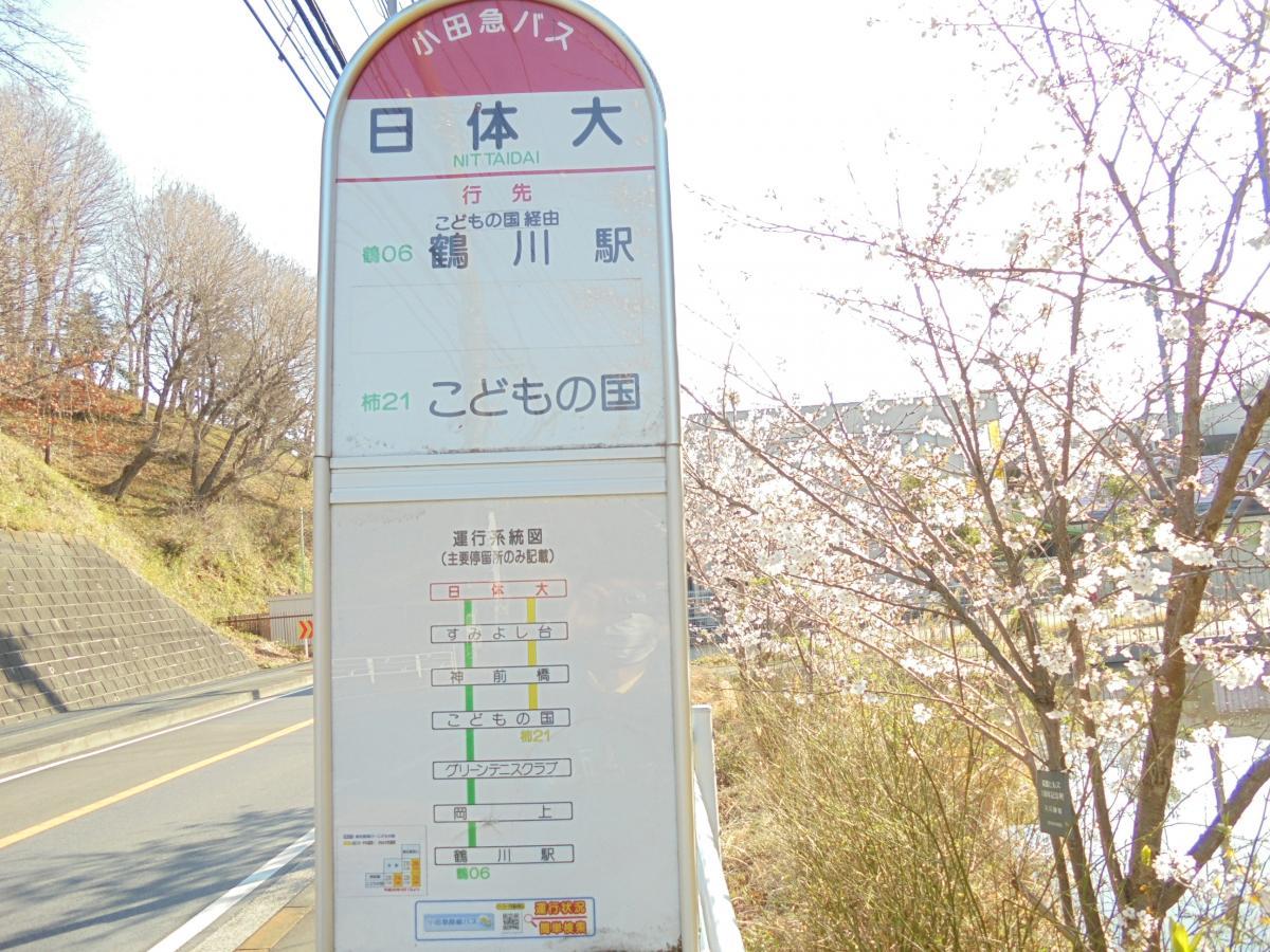 かなちゅう バス 時刻 表 神奈川中央交通 バス時刻表やバス停検索 路線バス情報