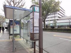 「富山市役所」バス停留所
