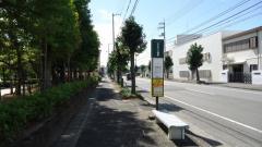 「うずしおふれあい公園前」バス停留所