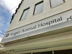 エンジェル動物病院