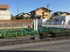 「本田団地北」バス停留所