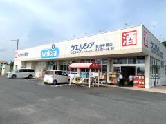 ウエルシア 鉾田中根店