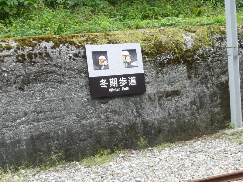 トロッコ列車軌道脇トンネル