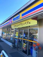 ミニストップ 日田下井手町店