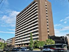 熊本市役所
