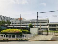 大島南央小学校
