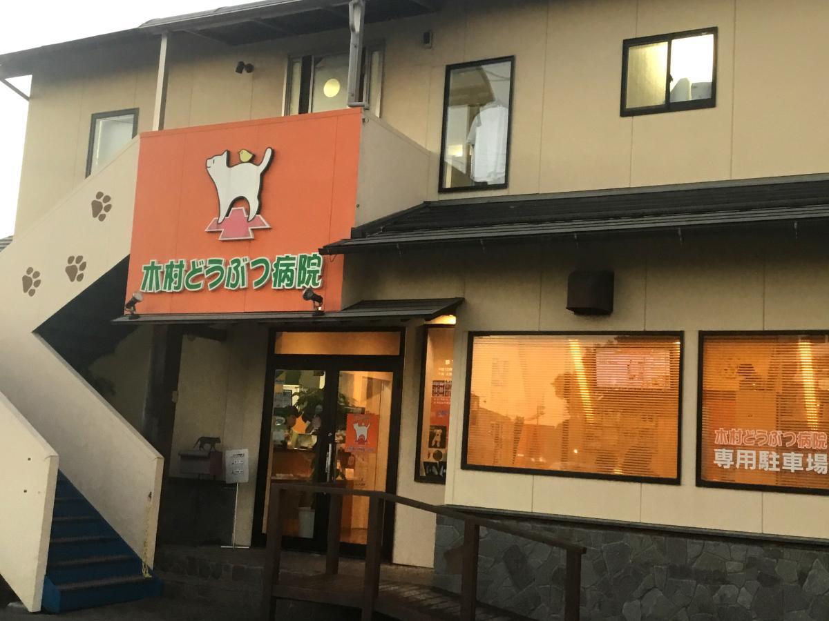 高知市前里の人気 動物病院