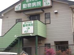 栃木中央動物病院
