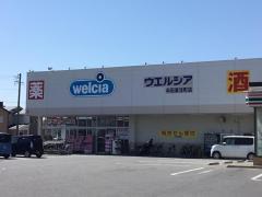 ウエルシア 半田東洋町店