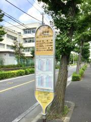 「小学校前(横浜市泉区)」バス停留所