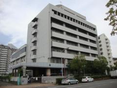 摩耶兵庫高校