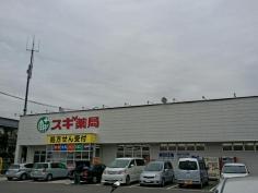 スギ薬局 藤岡店