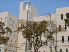 私立和歌山信愛女子短期大学附属中学校