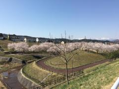 錦ケ丘中央公園